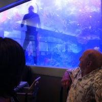 Photo taken at Mandarin Buffet by Rayissa P. on 6/16/2012