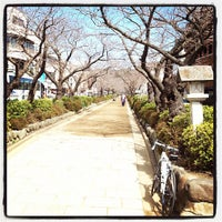 Photo taken at 鶴ヶ岡会館 by aqua_bleu (. on 3/13/2012