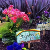 Photo taken at Desert Canyon Middle School by Brandon Z. on 4/17/2012