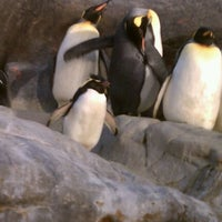 Photo taken at Saint Louis Zoo by Kyle B. on 3/10/2012