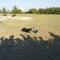 Photo taken at Davis Island Dog Park by Diana B. on 3/26/2012