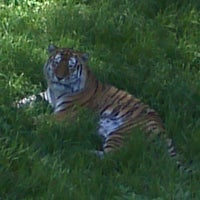 Photo taken at Minnesota Zoo by Olympia A. on 6/18/2012