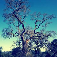 Photo taken at Windy Hill Open Space Preserve by Danny R. on 3/3/2012