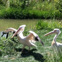 Photo taken at Fort Wayne Children's Zoo by Krystal S. on 8/18/2012