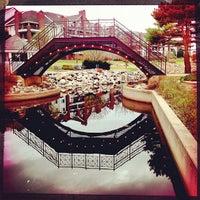 Photo taken at Centennial Lakes Park by Jesse V. on 3/21/2012
