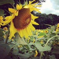 Photo taken at Buttonwood Farm by Jill B. on 7/27/2012