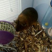 Photo taken at Krea's Office by Brandilynn N. on 2/14/2012