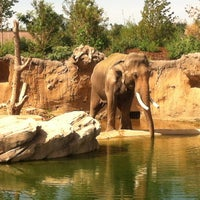 Photo taken at Denver Zoo by Benjamin Eric on 7/15/2012