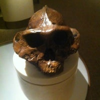 Photo taken at David H. Koch Hall of Human Origins by Andrew K. on 6/25/2012
