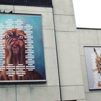 Photo taken at Musée d'art contemporain de Montréal (MAC) by Krıstófer-Þórır D. on 7/12/2012