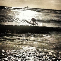 Photo taken at Ocean Beach Dog Beach by david b. on 5/16/2012