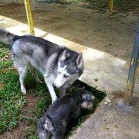 Photo taken at Pet Movers @ Pasir Ris Dog Run by Susan T. on 5/5/2012