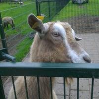Photo taken at Kinderboerderij Otterspoor by Danny F. on 6/19/2012