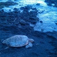 Photo taken at Punalu'u Black Sand Beach by Rachelle G. on 7/31/2012