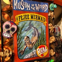 Photo taken at Museum Of The Weird by James B. on 3/13/2012