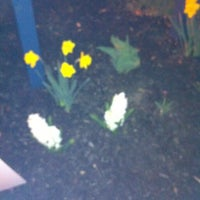 Photo taken at Northampton Community College by Tracy B. on 3/23/2012