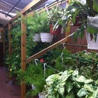 Photo taken at Jardineria Bordas by Nuria on 8/31/2012