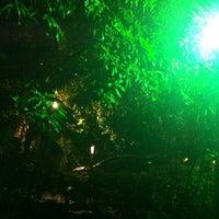 Photo taken at Purple Lotus Kava Bar by Veronika M. on 8/13/2012