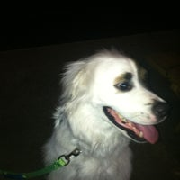 Photo taken at Dog & Duck - West Ashley by Cayce T. on 4/15/2012
