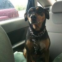 Photo taken at Fox Valley Veterinary by Elizabeth K. on 4/19/2012