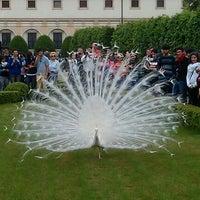 Photo taken at Wallenstein Garden by Nick S. on 5/3/2012
