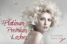 Platinum Image Services