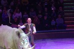 Белорусский государственный цирк - Цирк