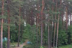 Сосновый бор в Витебской области - Оздоровительный комплекс