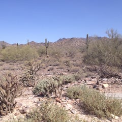 Photo taken at Sonoran Preserve - Sonoran Loop Trail by Briana K. on 3/9/2012