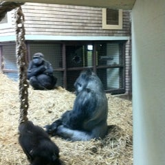 Photo taken at Blackpool Zoo by Colin F. on 7/10/2012