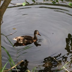 Photo taken at Wood Lake Nature Center by Joan F. on 8/16/2012