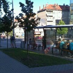 Photo taken at Skácelova (tram, bus) by Angel K. on 8/19/2012