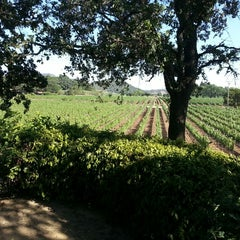 Photo taken at PlumpJack Winery by Piko on 8/13/2013