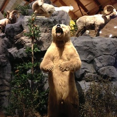Photo taken at Cabela's by Matthew M. on 11/12/2012