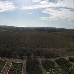 Foto scattata a La Foresteria Planeta da Rocco R. il 11/22/2014