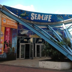 Photo taken at National Sea Life Centre by Lauren S. on 6/9/2013