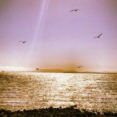 Photo taken at San Leandro Marina by Puja on 5/21/2013