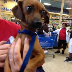Photo taken at PetSmart by Taylor F. on 10/6/2012