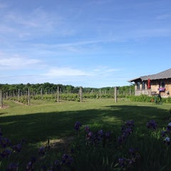 Photo taken at Silver Leaf Vineyard and Winery by Rebekah C. on 6/14/2014