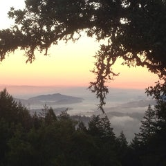Photo taken at Mt. Tamalpais Amphitheater by Mike D. on 7/14/2013