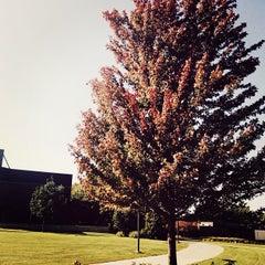 Photo taken at Drake University by Morgan D. on 9/26/2013