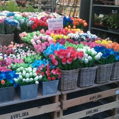 Photo taken at Bloemenmarkt by andyp on 1/26/2013