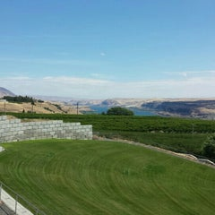 Photo taken at Maryhill Winery & Amphitheater by Janel P. on 7/11/2015