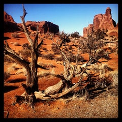 Photo taken at Arches National Park by Dmitry S. on 2/2/2013