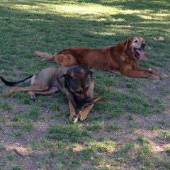 Photo taken at White Rock Lake Dog Park by Ashley S. on 5/7/2013