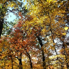 Photo taken at Ledges State Park by Christopher B. on 9/29/2012