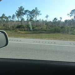 Photo taken at Alligator Alley by Dave P. on 12/9/2012