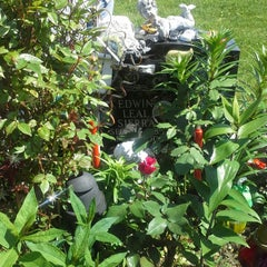 Photo taken at Lutheran-All Faiths Cemetery by Rube S. on 5/27/2013