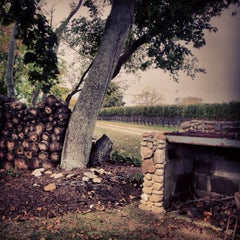 Photo taken at McCall Vineyard by Chelle . on 10/20/2013