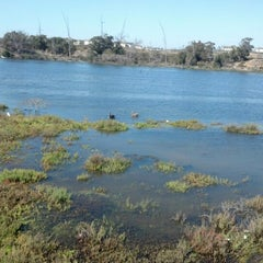 Photo taken at Bolsa Chica Wetlands by David P. on 9/20/2012